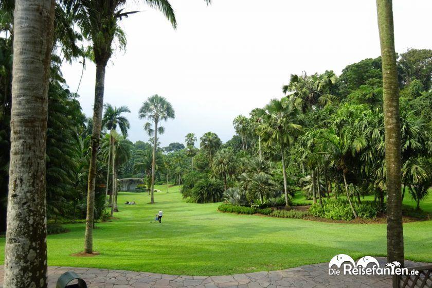 Der Botanische Garten in Singapur