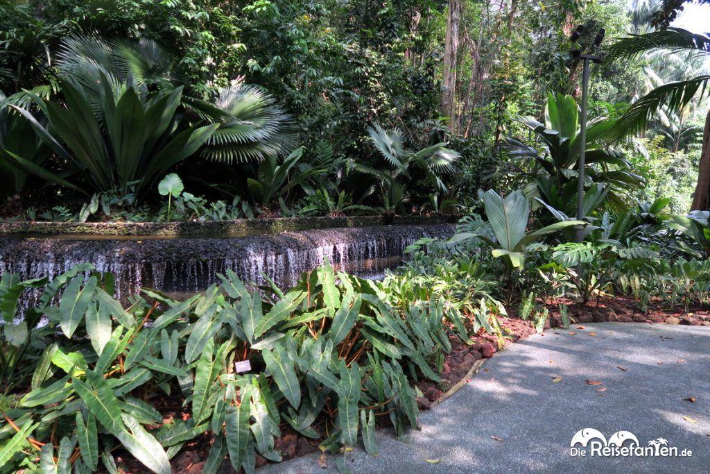 Ein Brunnen im Botanischen Garten in Singapur