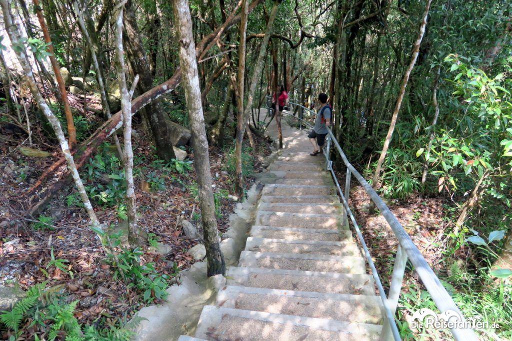 Der Fußweg zur Skybridge auf Langkawi