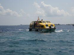 Tenderboot zwischen AIDA und Male