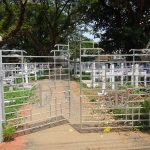 Christlicher Friedhof in Cochin