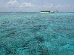 Klares Wasser zum Schnorcheln auf den Malediven
