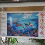 Richtiges Verhalten im Meer ist auch dem Bandos Resort auf den Malediven wichtig