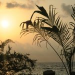 Sonnenuntergang im Bandos Resort auf den Malediven