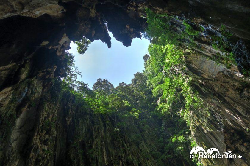 Blick gen Himmel in den Batu Caves in Malaysia