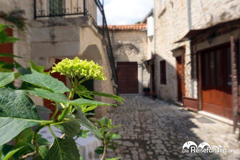 Schöne Treppe in Trogir 8