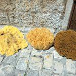 Schwämme zum Verkauf in Trogir
