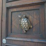 Die Schildkröte ziert ein Haus in einem der 17 Contrada Sienas.jpeg