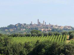 Blick auf San Gimigniano von der Fattoria Voltrona San Gimignano