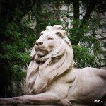 Löwe vor der NYC Public Library