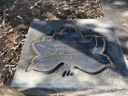Rosa Parks Gedächtnisstein in Montgomery