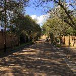 In den Straßen von Natchez