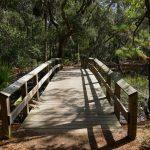 Geführte Wegstrecke auf der Wormsloe Plantation in Savannah