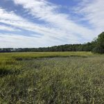 Weite Sicht auf der Wormsloe Plantation in Savannah