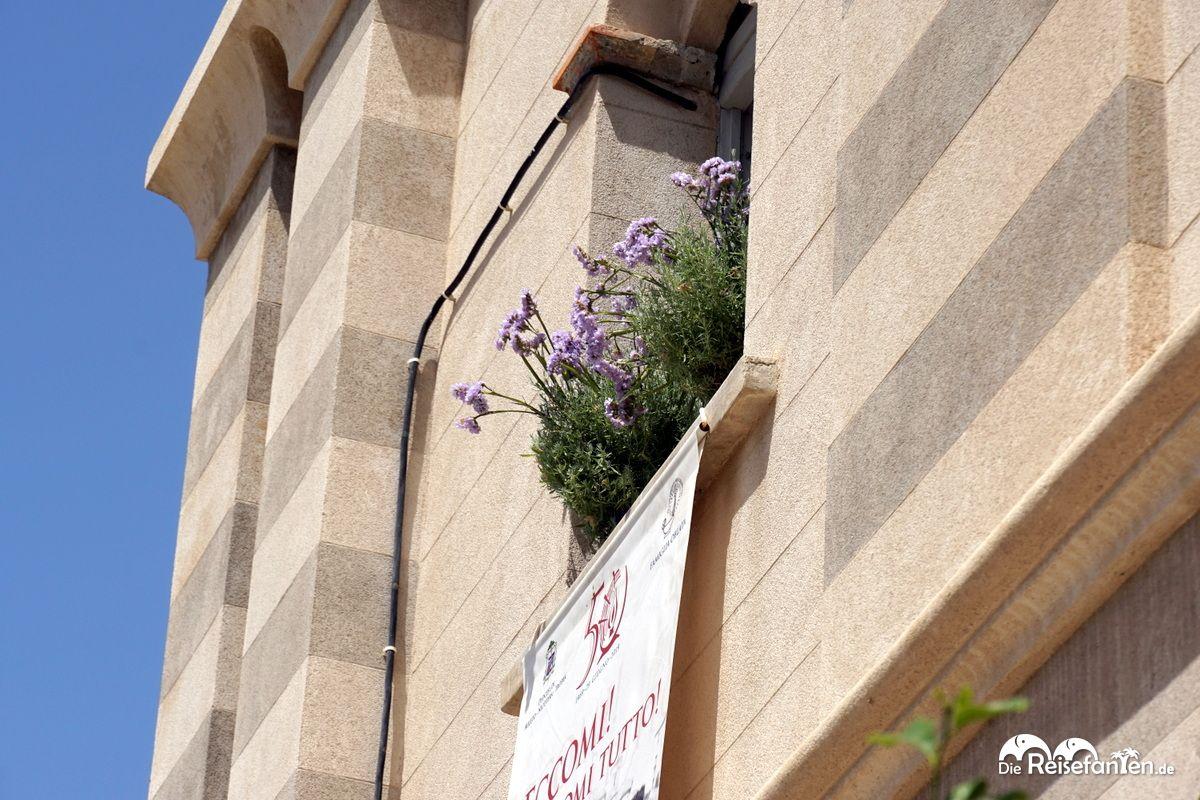 Am Fenster der Wallfahrtskirche Santa Maria dell'Isola