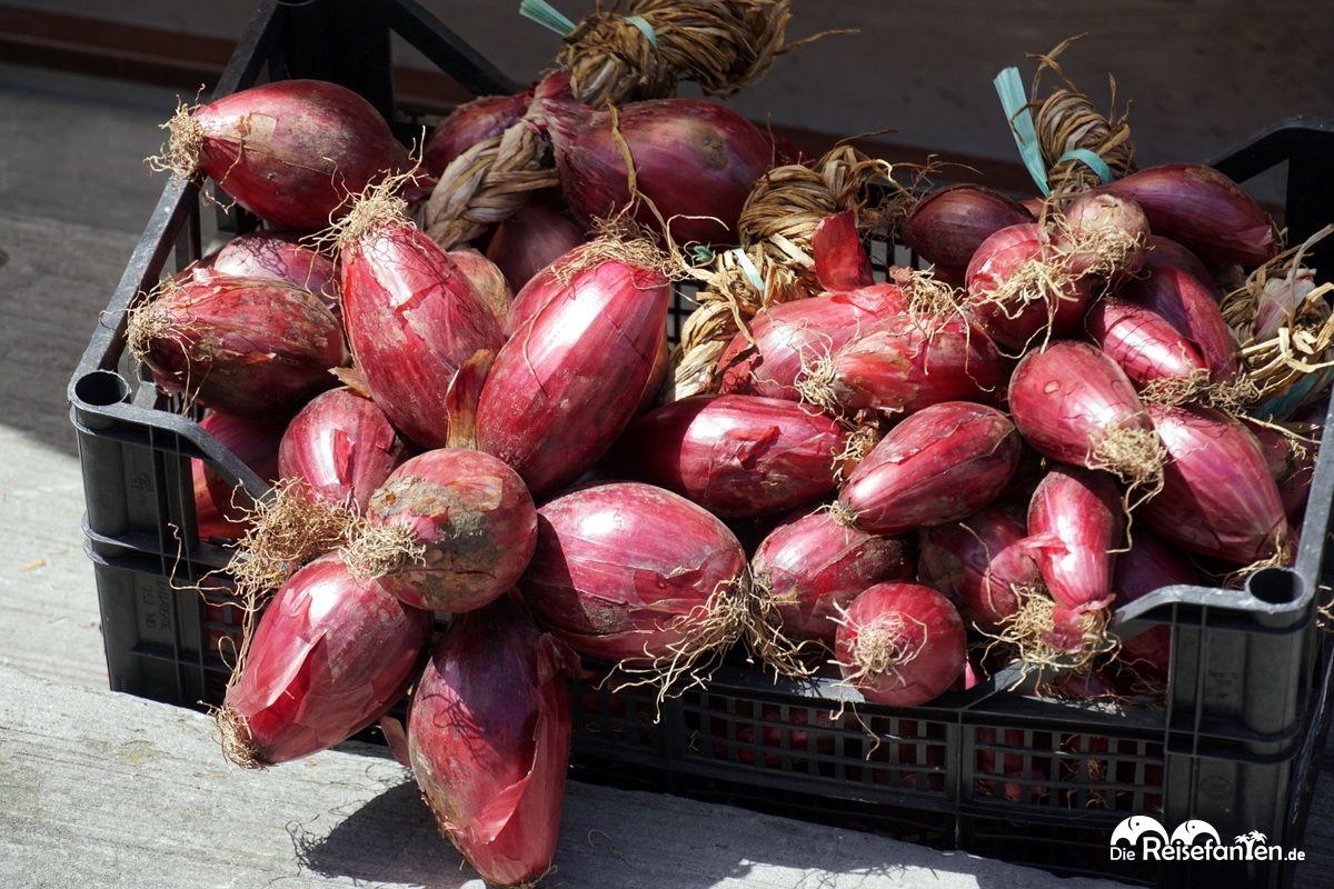 Die süße Zwiebel aus Tropea