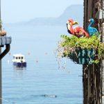 Bilck aufs Meer im italienischen Scilla