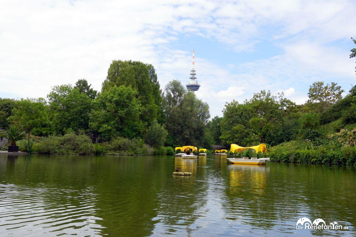 Boote der Gondoletta im Luisenpark Mannheim vor dem Fernmeldeturm