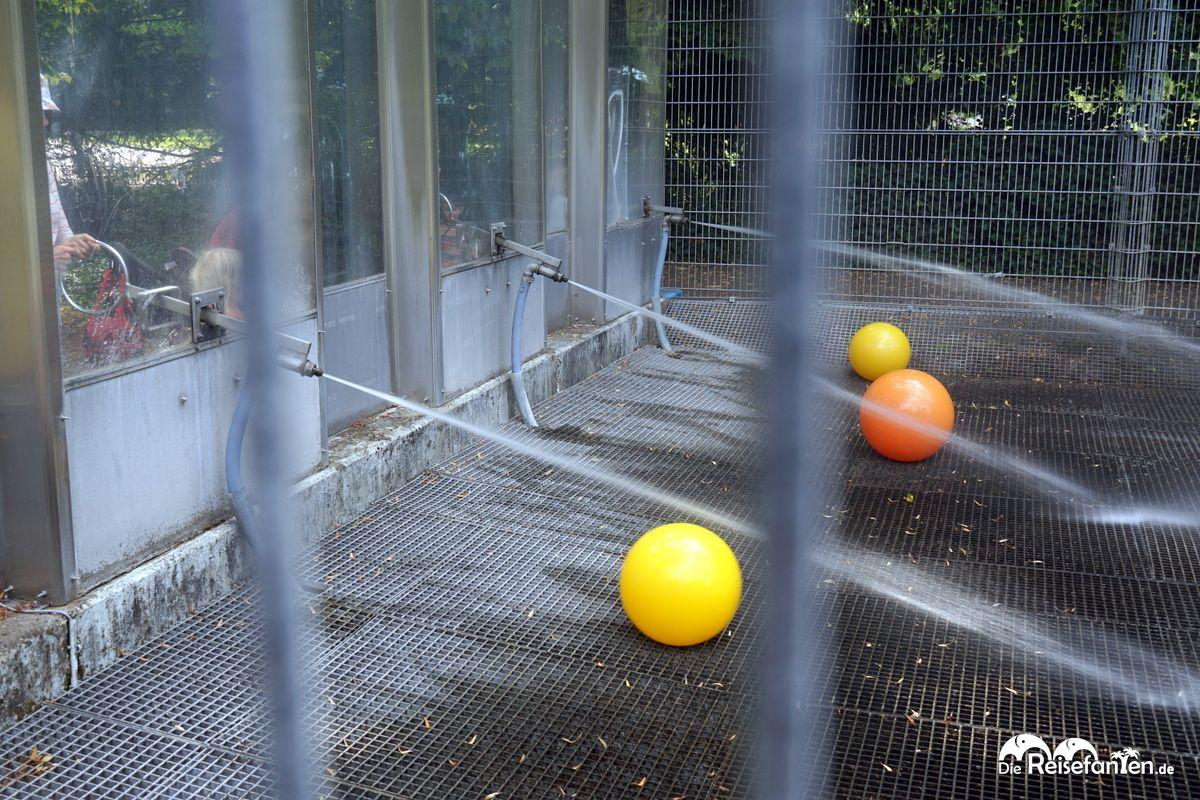 Die Wasserspiele im Herzogenriedpark in Mannheim.jpg