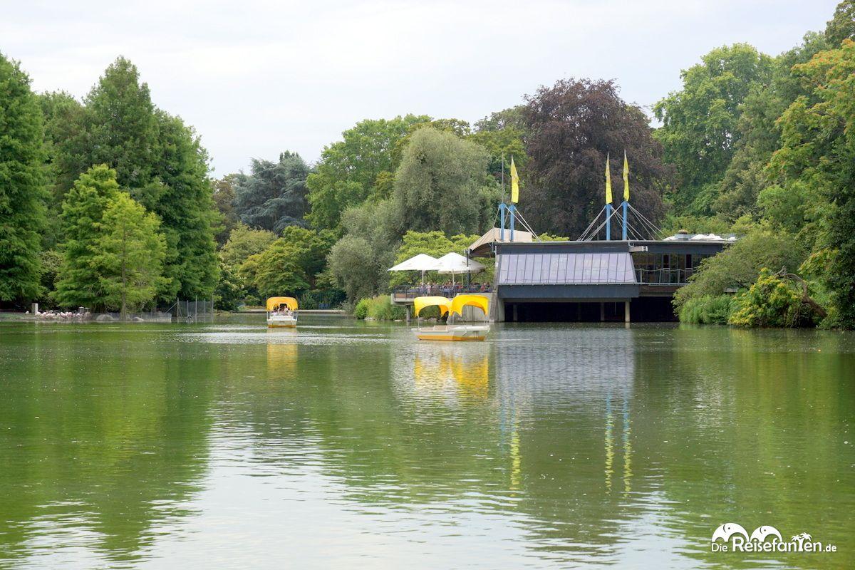 Die gelben Boote der Gondoletta im Luisenpark Mannheim