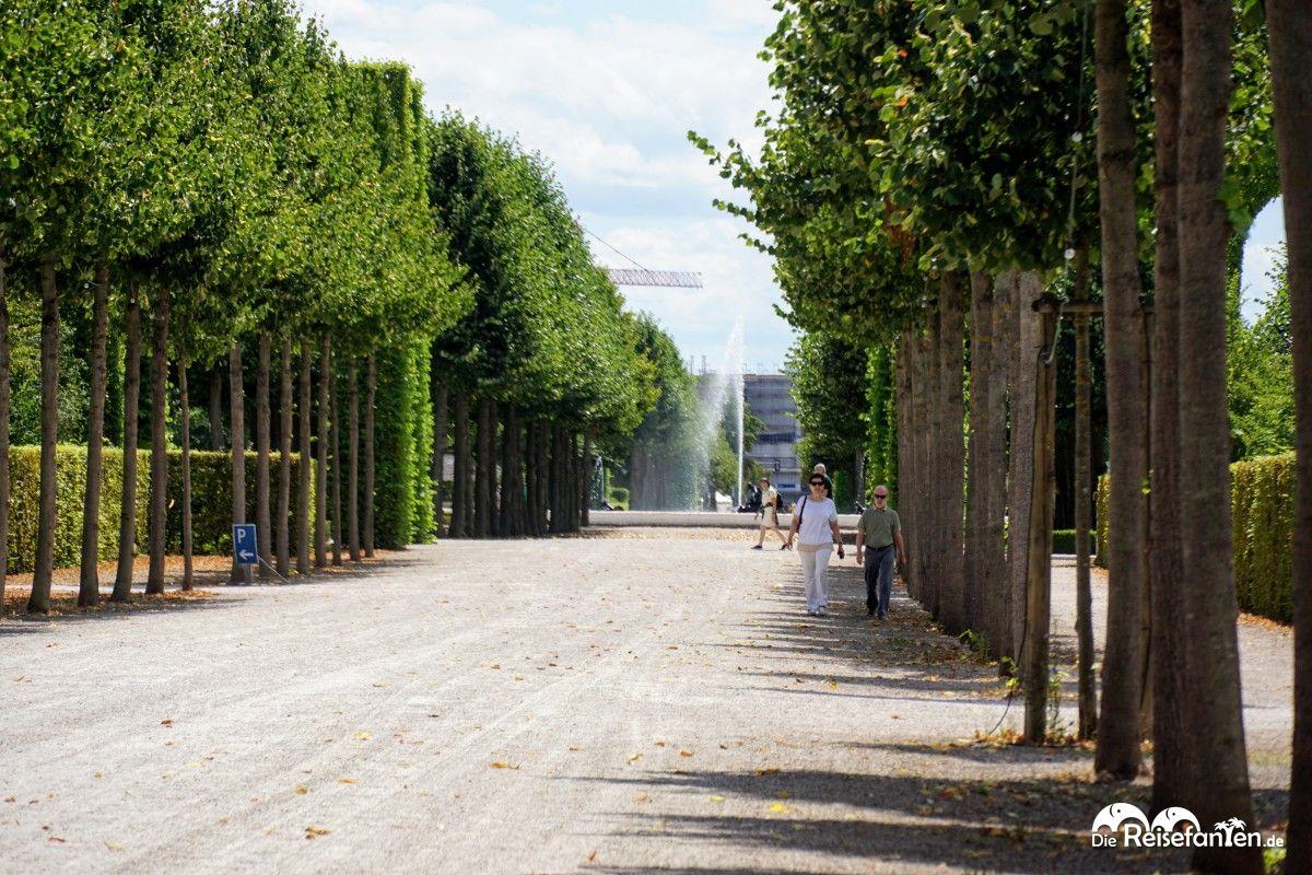 Breite Wege im Schwetzinger Schlosspark
