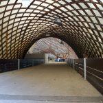 Impressionen aus der Multihalle im Mannheimer Herzogenriedpark 3