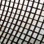 Impressionen aus der Multihalle im Mannheimer Herzogenriedpark 6