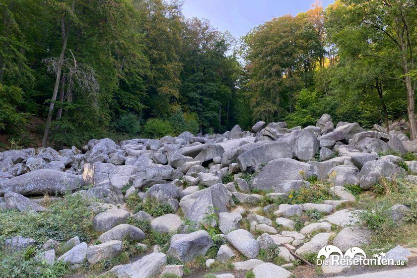 Über große und kleine Felsen kann im Felsenmeer im Odenwald geklettert werden