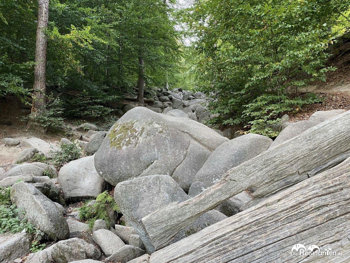 Das Felsenmeer im Odenwald ist ein Abenteuer für die ganze Familie Kopie