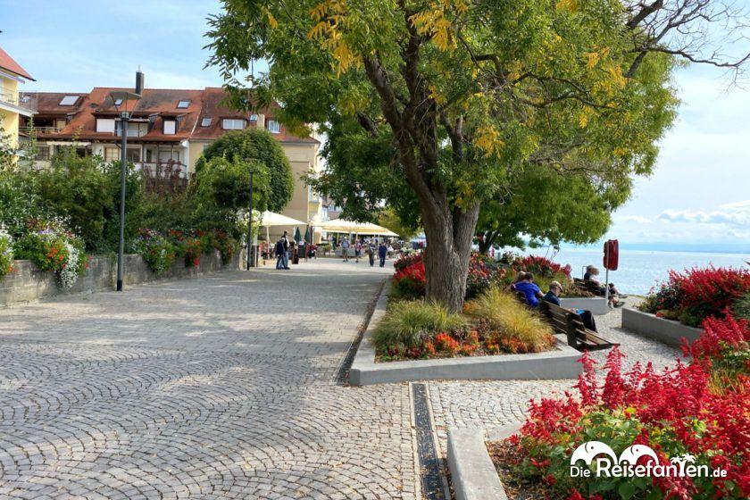 Gepflegte Uferpromenade in Überlingen