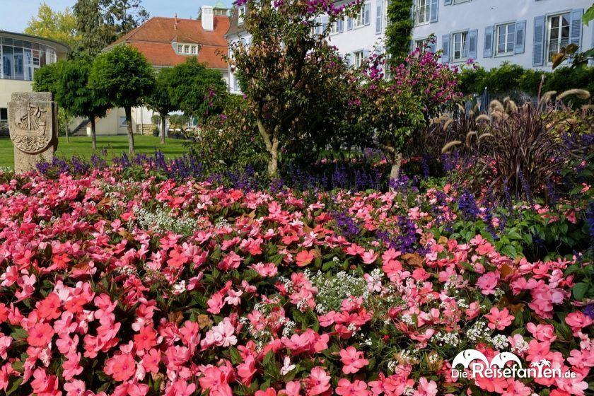 Pralles Blumenbeet in Überlingen