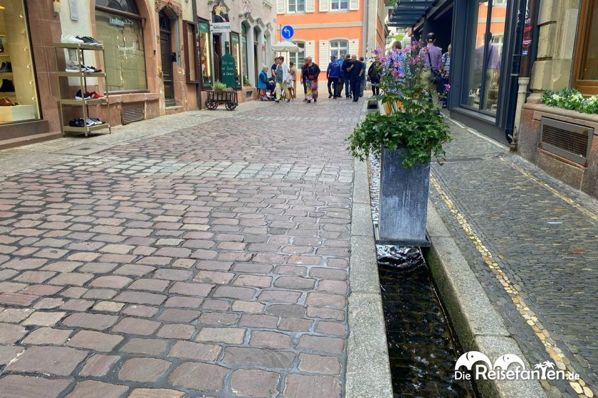 Wasserlauf in der Innenstadt von Freiburg