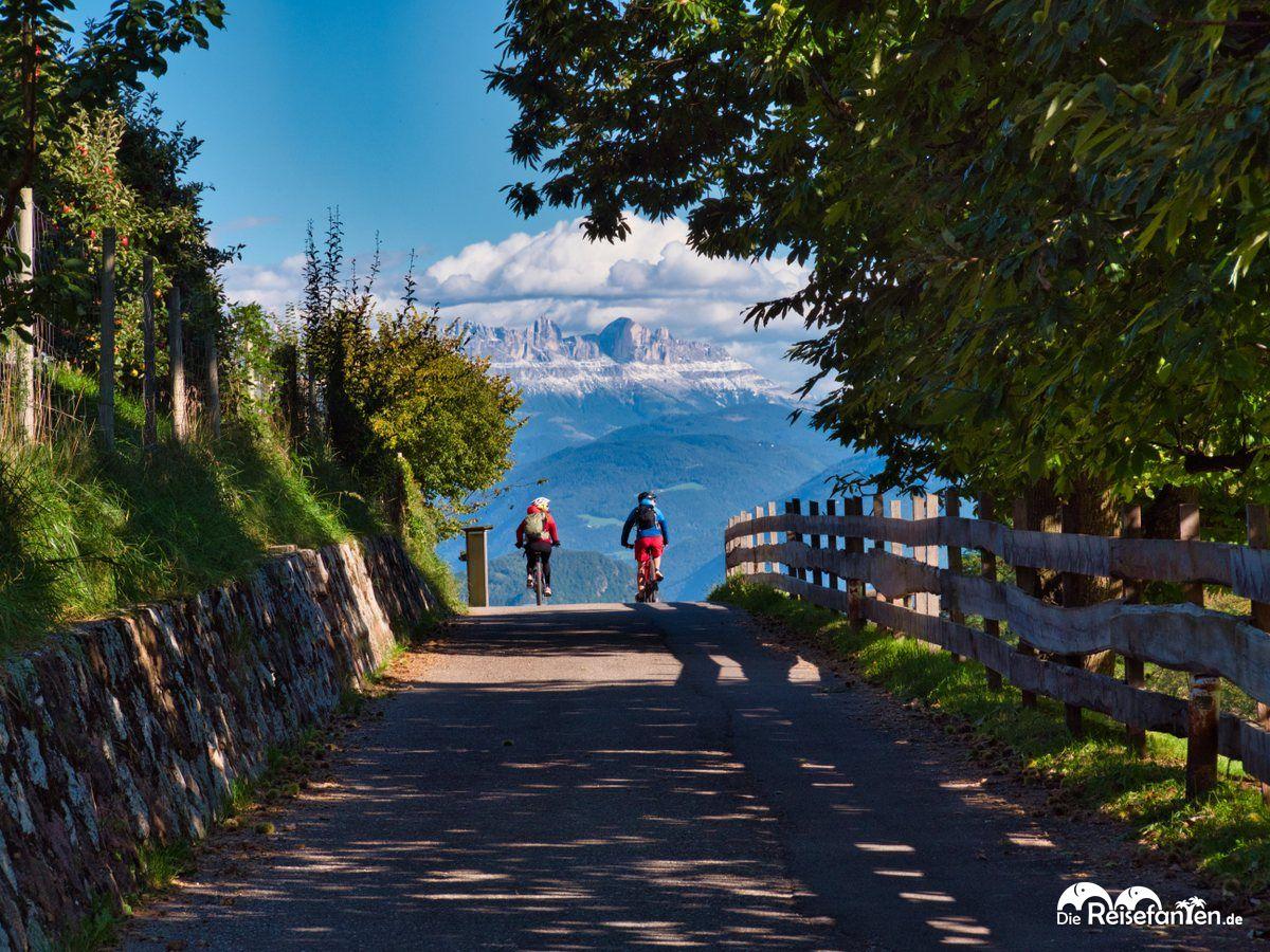 Mountainbiker vor Bergkulisse