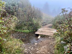 Bachüberquerung entlang des Wanderweges auf der Seiser Alm in Südtirol