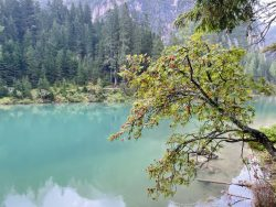 Farbkontraste am Prager Wildsee in Südtirol