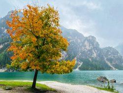 Indian Summer am Prager Wildsee in Südtirol