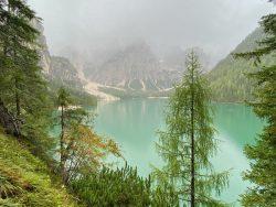Nebeliger Prager Wildsee in Südtirol