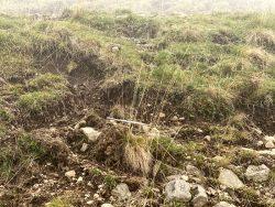 Weidefläche der Kühe auf der Seiser Alm in Südtirol