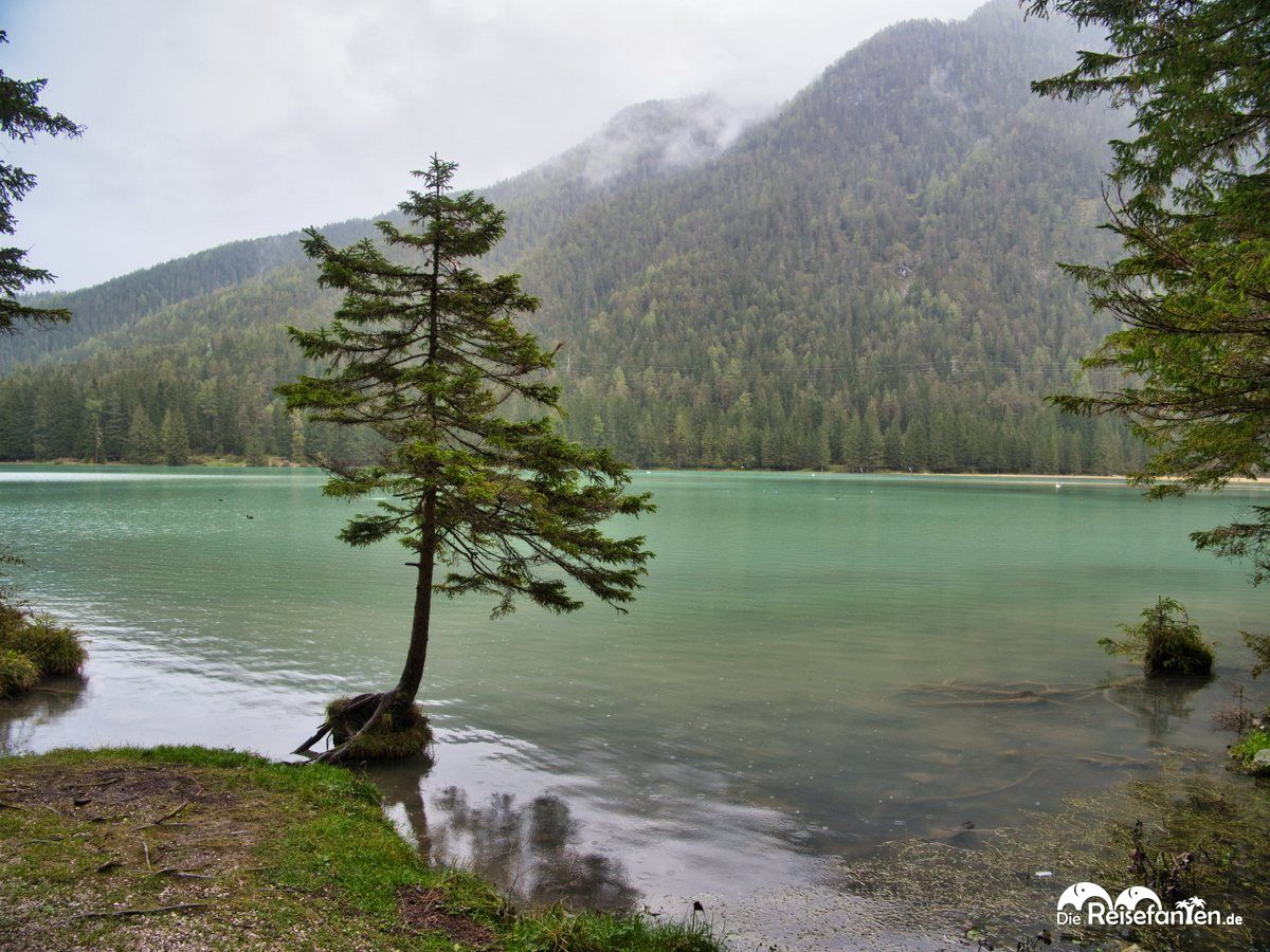 Der schöne Toblacher See