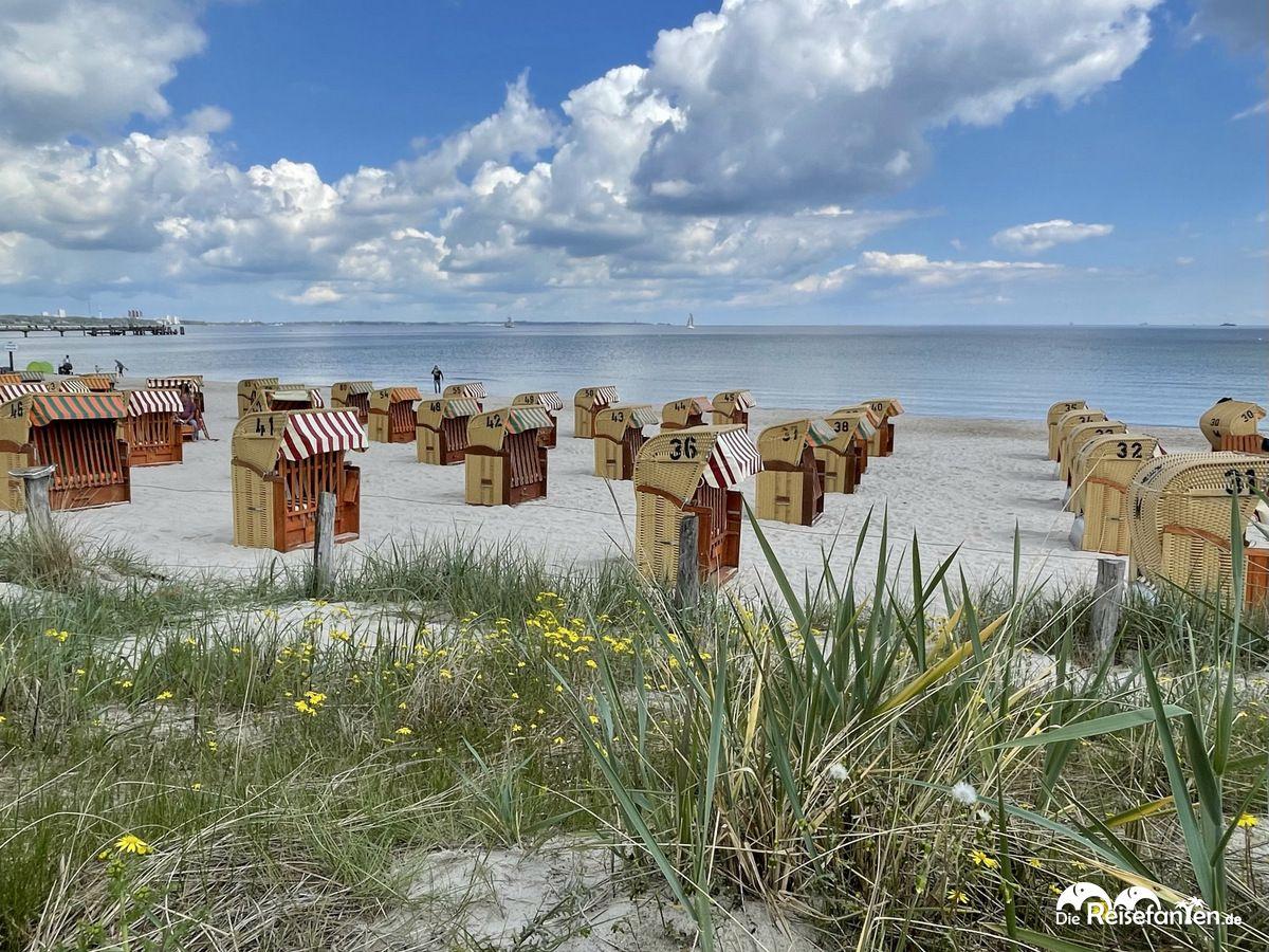 Noch leere Strandkörbe in Scharbeutz an der Lübecker Bucht