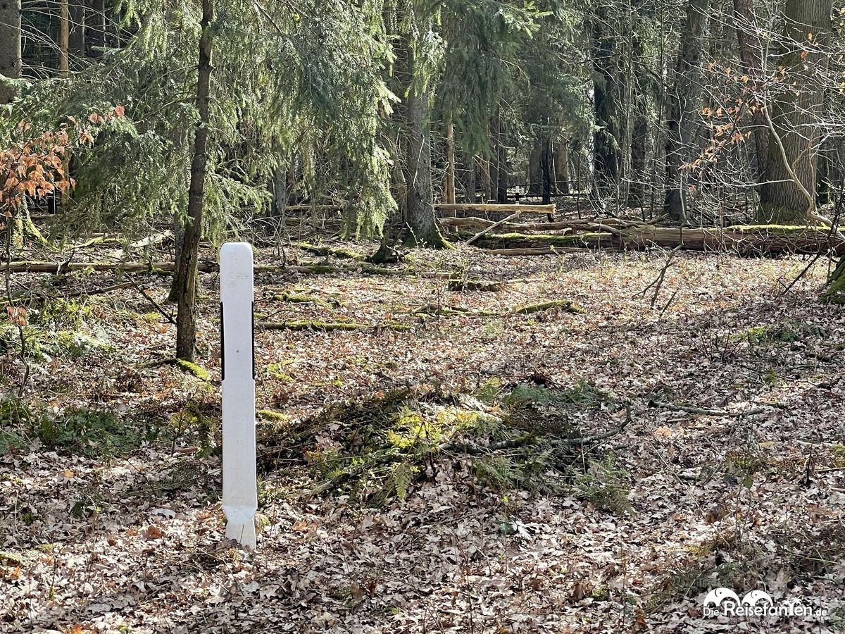 Mitten im Wald entdeckten wir diese Leitpfosten