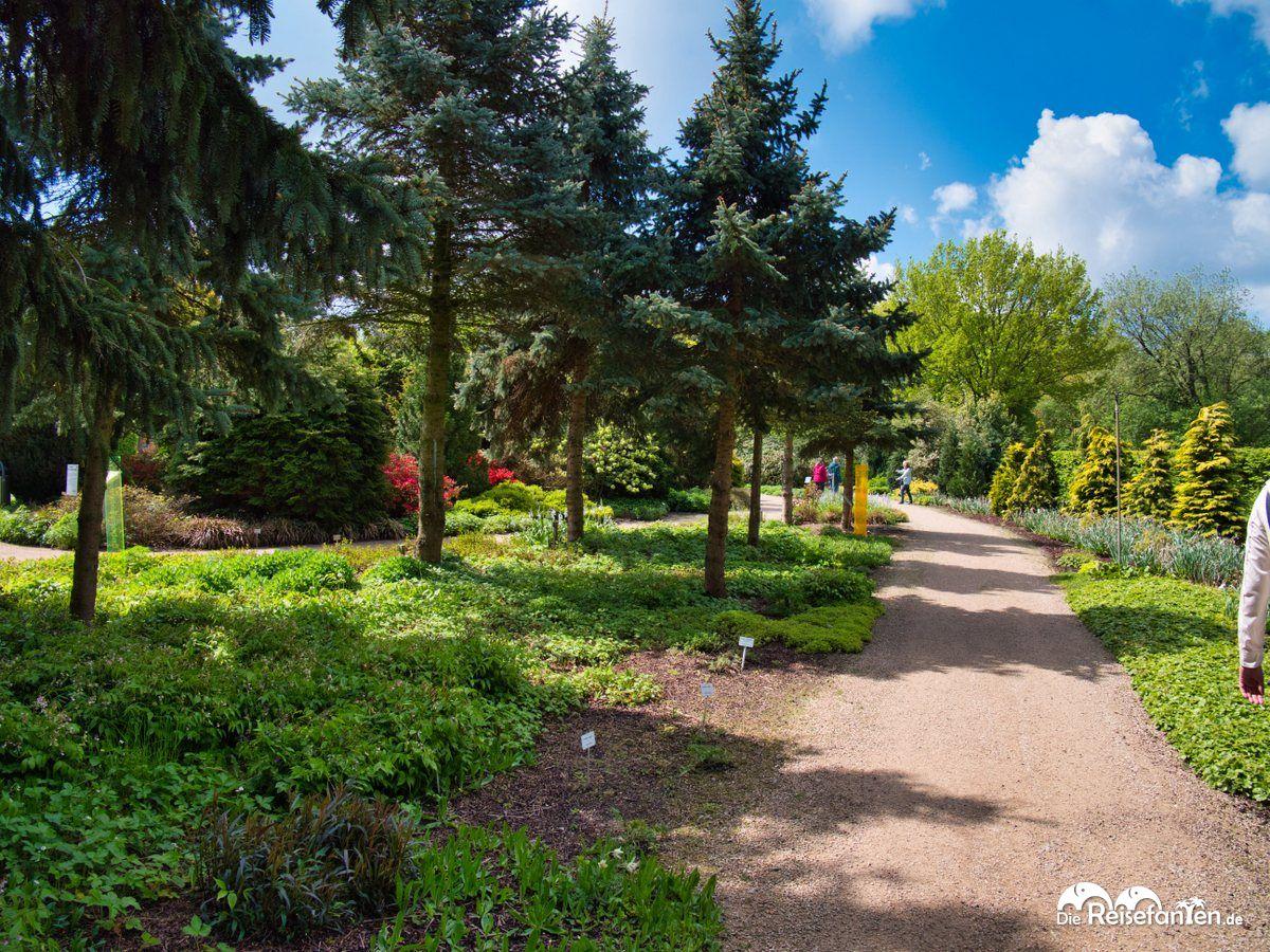 Weite Wege im Park der Gärten