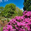 Impressionen aus dem Park der Gärten 14