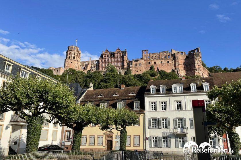 Das Heidelberger Schloss, ganz in der Nähe der Alten Münz