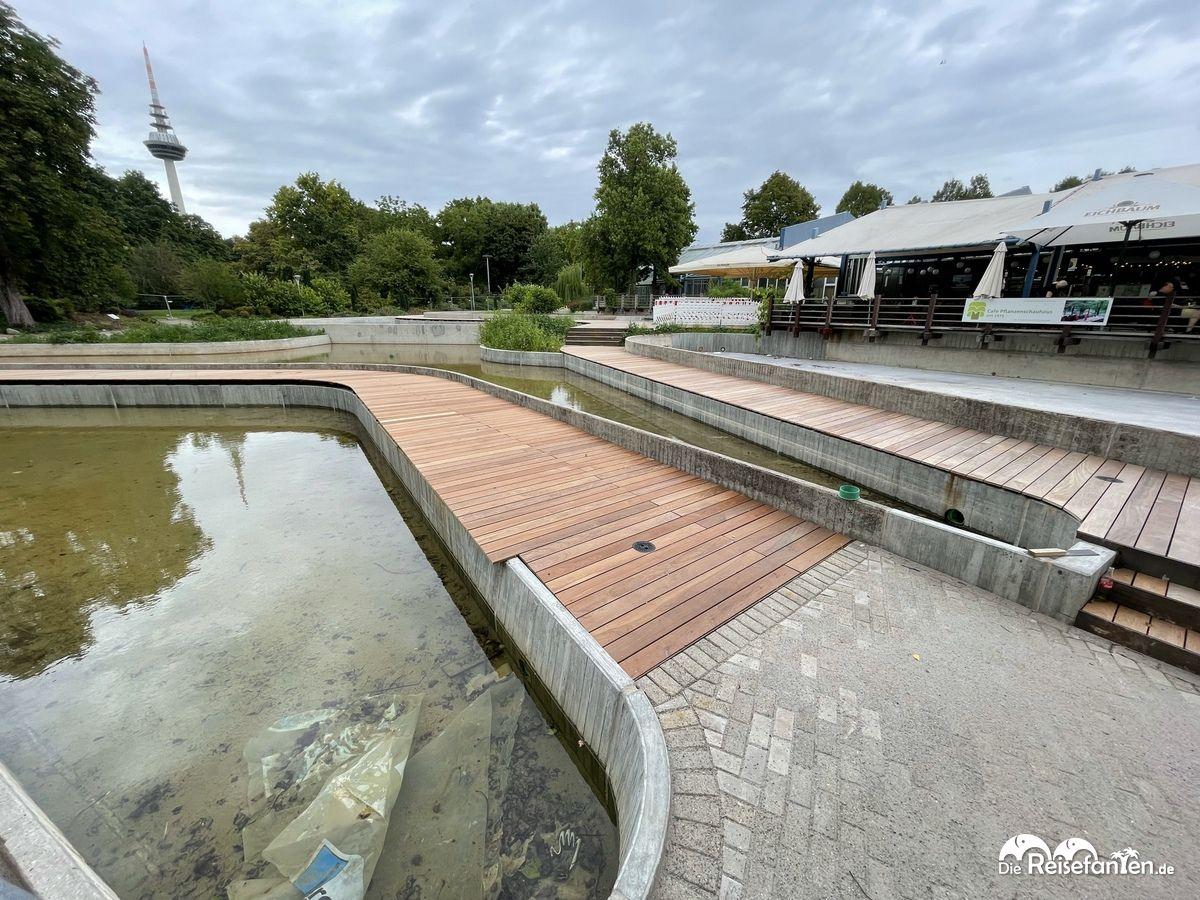 Die Seerosenbecken im Luisenpark werden schon für die BUGA23 vorbereitet