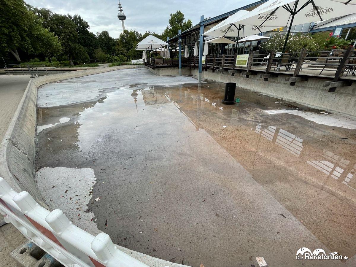 Die neuen Seerosenbecken im Luisenpark