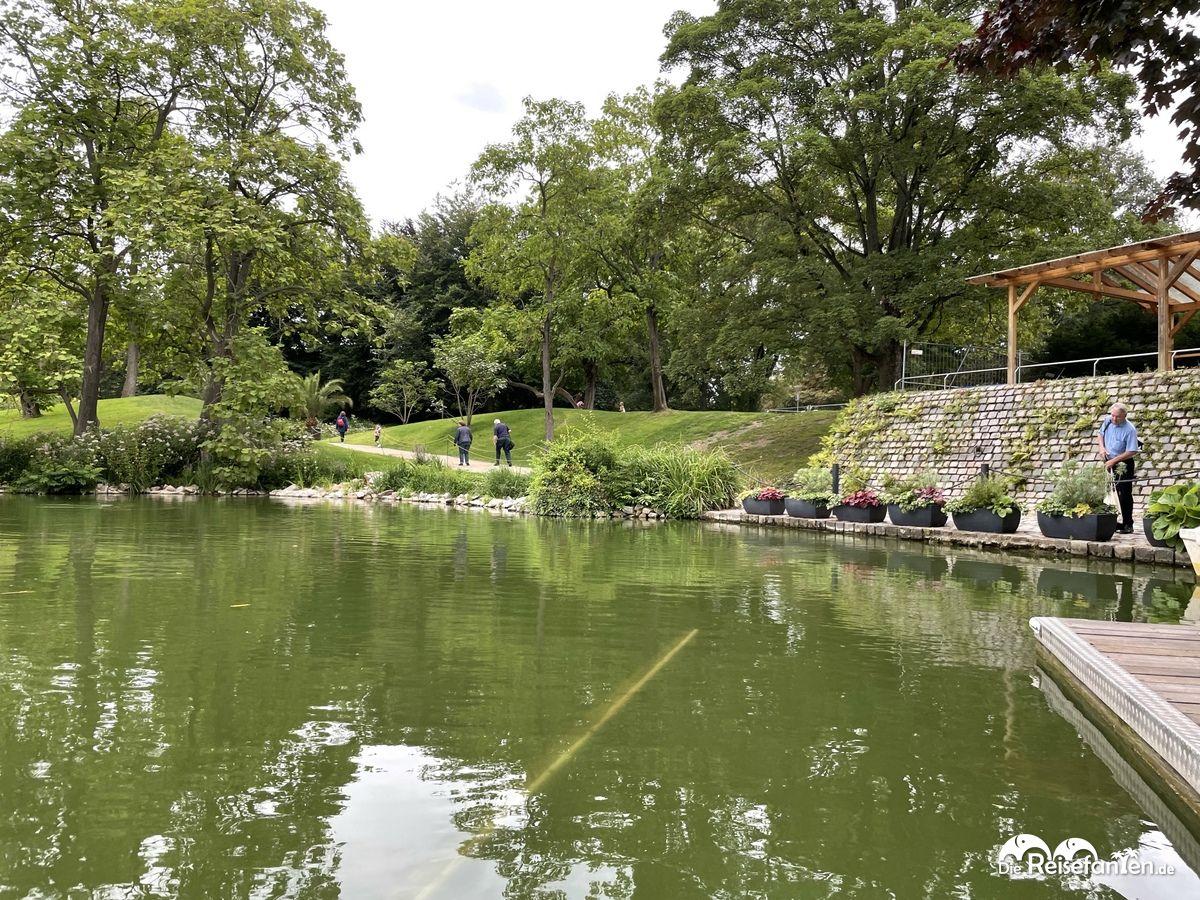 Durchbruch vom Bootsanleger der Gondoletta im Luisenpark Mannheim
