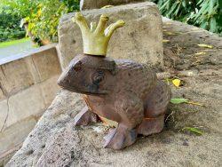 Froschkönig in Bad Sooden