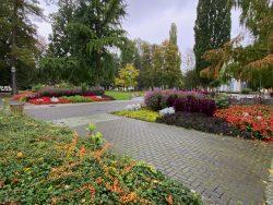 Schön angelegter Kurgarten in Bad Sooden